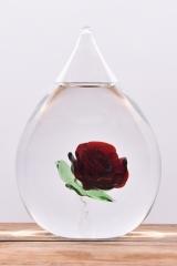 Druppel roos